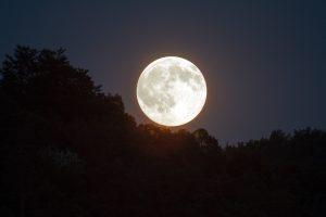 full-moon-1775764_1280